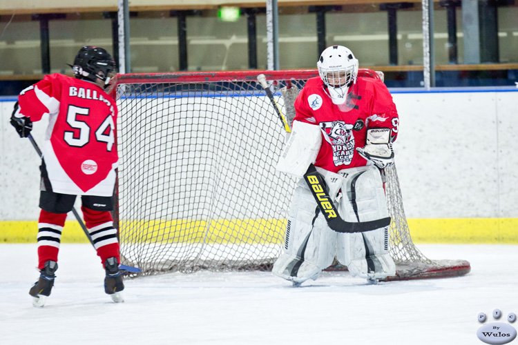 AO_BearsvNorthStars_5Jul_0115