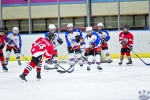 AO_BearsvNorthStars_5Jul_0013