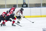 Game 7 Aldergrove Bruins v St Paul Sioux 22Mar