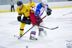 North Stars v Sting 26Sep