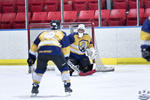 D3_SharksvGoldMiners_12May_0203