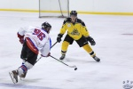 Sting v North Stars 21Apr