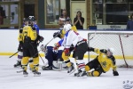 StingvNorthStars_21Apr_0395.jpg