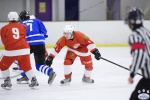 MapleLeafsvRedWings_16Feb_0075.jpg