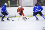 MapleLeafsvRedWings_16Feb_0132.jpg