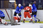 MapleLeafsvRedWings_16Feb_0136.jpg
