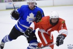 MapleLeafsvRedWings_16Feb_0205.jpg