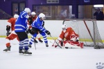 MapleLeafsvRedWings_16Feb_0218.jpg
