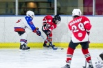 NorthStarsvBears_Atoms_4May_0180