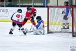 NorthStarsvBears_Atoms_4May_0197